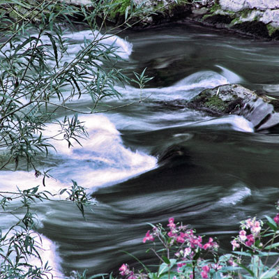 Fluss (c)Ronny Senst / PIXELIO