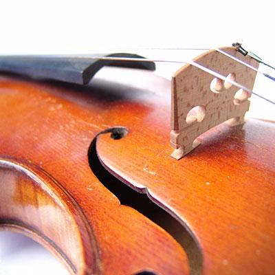 Violin(c)propa/SXC
