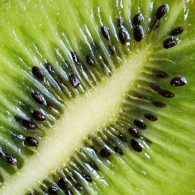 Kiwi(c)naliha/pixelio.de