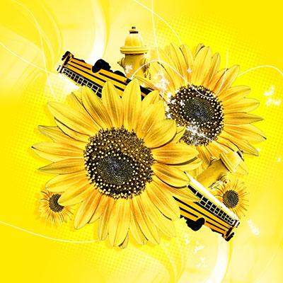 FlowerPower(c)jusone/SXC