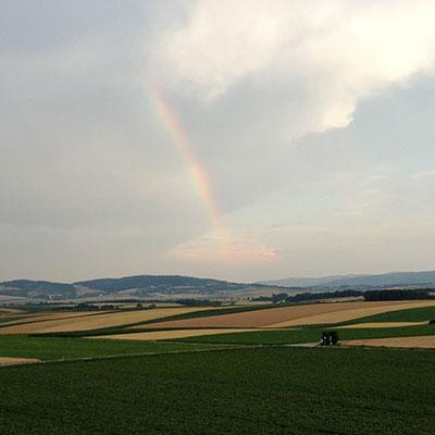 Regenbogen über Großmugl Umgebung